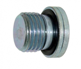 Afdichtplug inbus M10x1 met NBR seal
